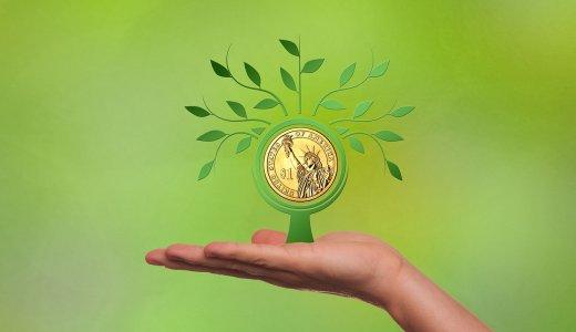 【主婦投資おススメ】株やFXを、私が実際に試してみた感想②外貨ってどうなの?