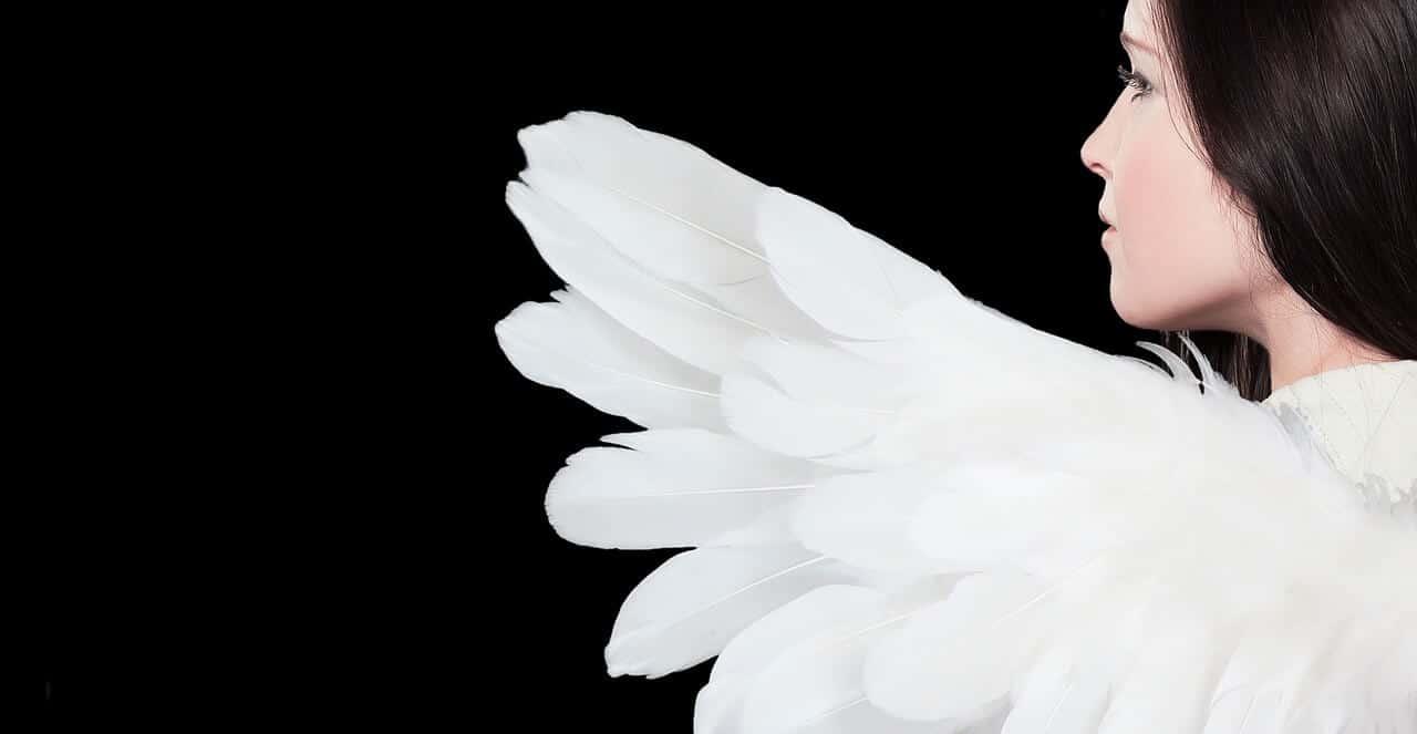 【更年期外来日記④ホルモン補充療法】ホルモンパッチ貼付後2週間